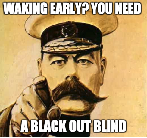 you need a black out blind