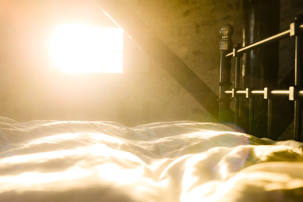 dawn light streaming through window