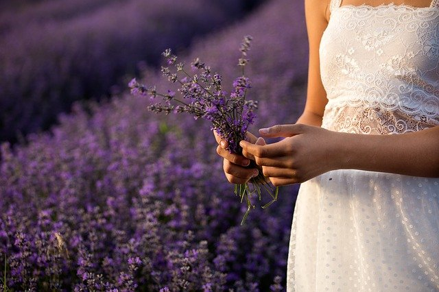 effects of lavender on post partum women